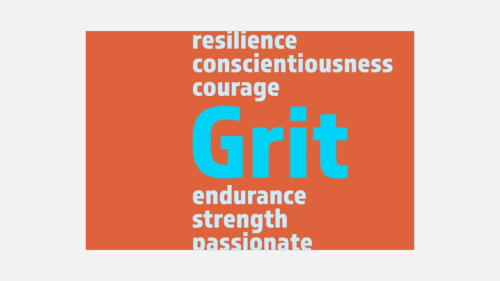 CT IL Conference keynote - Coming Clean About Grit (11)